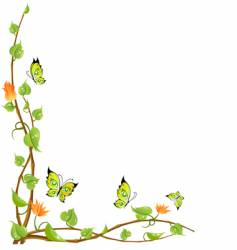 vine and butterflies vector image