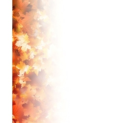 Autumnal foliage against white eps 10 vector