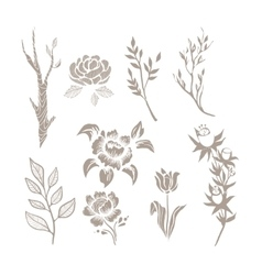 Hand drawn plant monochrome set vector