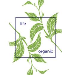 organic 1 vector image