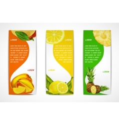 Tropical fruits vertical banner set vector