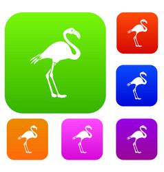 Flamingo set collection vector