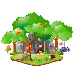many bugs living in forest vector image vector image