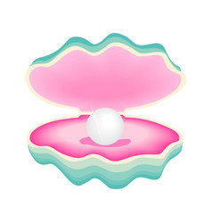 open seashell scallop and pearl shell vector image