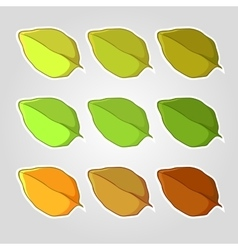 Set of leaves vector image