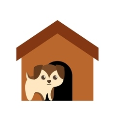 Puppy adorable pedigree brown house vector