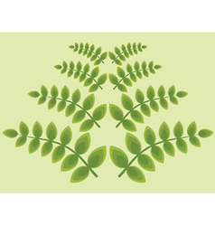 Foliage wallpaper vector