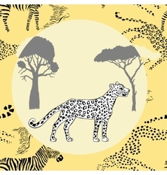 Leopard between savanna trees vector