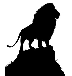 Majestic lion vector image