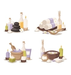Spa still life icons with water lily and zen stone vector image