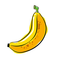 banana fresh and healthy fruit vector image vector image