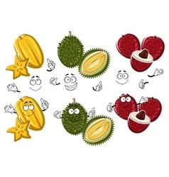 Cartoon thai lychees durian and carambola fruits vector