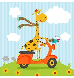 Giraffe bird riding on scooter vector