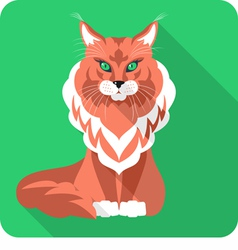Cat maine coon icon flat design vector
