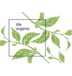 organic 1 2 vector image vector image