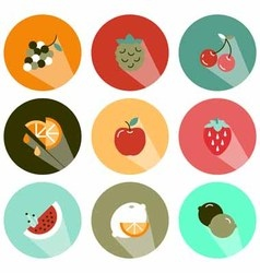 Fruits icons shadow vector