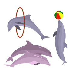 Playful dolphins dolphin set hand drawn sea vector