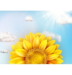 Sunflower with blue sky - autumn eps 10 vector