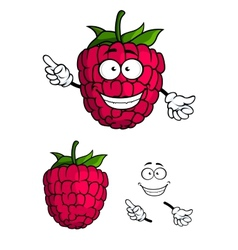 Cute happy smiling cartoon raspberry fruit vector image vector image