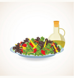 Fresh vegetable and green leaf salad dish vector