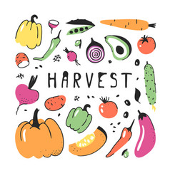 Hand drawn set of vegetable artistic vector