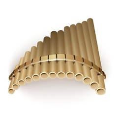 Pan flute vector image vector image