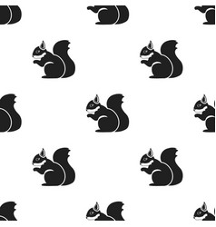 Squirrel icon in black style for web vector