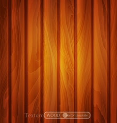 texture of brown wooden planks vector image vector image
