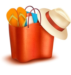 Beach bag with swimming suit vector image