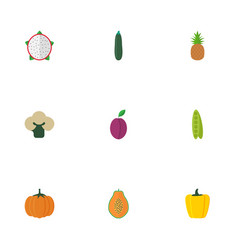 Flat icons pitaya ananas gourd and other vector