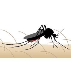 Mosquito bite vector image vector image