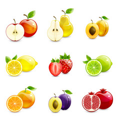 Set of bright fruits and their halves vector