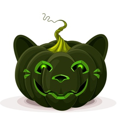 Halloween pumpkin cat vector