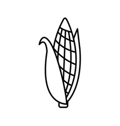 Thin line corn icon vector