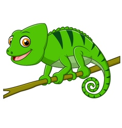 Cartoon lizard on branch vector