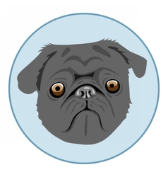 Digital pug dog face in blue circle vector