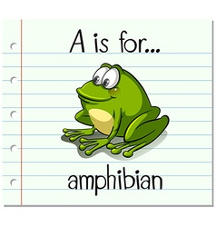 Flashcard letter a is for amphibian vector