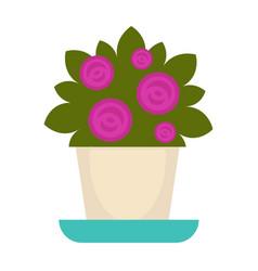 purple flowers in pot vector image vector image