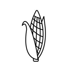 thin line corn icon vector image