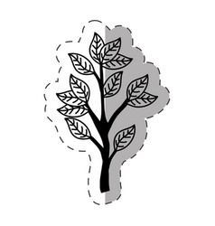 tree branch ecology monochrome vector image