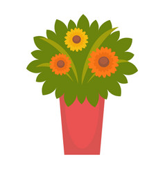 bouquet with fresh flowers vector image vector image
