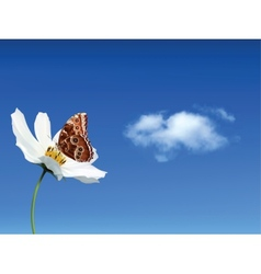 Butterfly On White Flower Against The Sky vector image