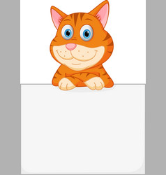 cute cat with sign vector image vector image