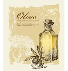 hand drawn olive vector image