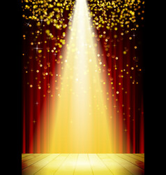 Stage Lighting Background with Spot Light Effects vector image vector image