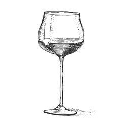 Red wine glass isolated vintage engraved hand vector