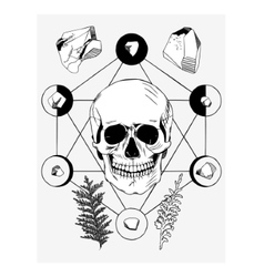with skull and ritual things black contour vector image