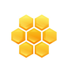 hexagon glossy cells with tasty honey vector image