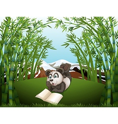 A panda reading at the hilltop with bamboos vector
