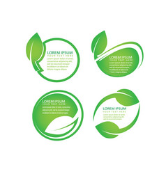 organic green leaf natural labels icon set vector image vector image